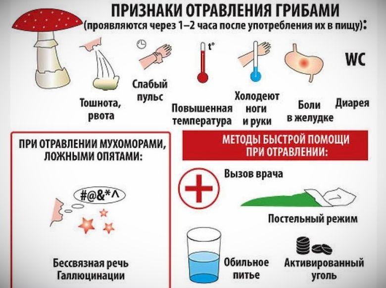 Реферат неотложная помощь при отравлении если заболевание активно развивается признаки пищевого отравления Первые симптомы пищевого отравления это постоянная рвота и понос